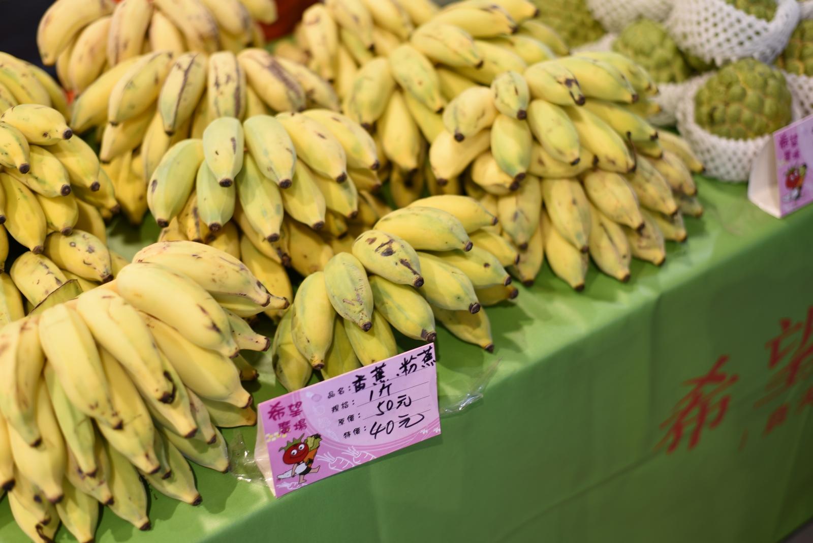 台北 希望広場 バナナ