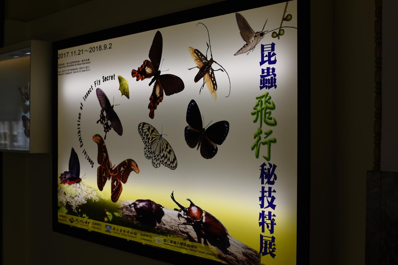 国立台湾博物館 特別展