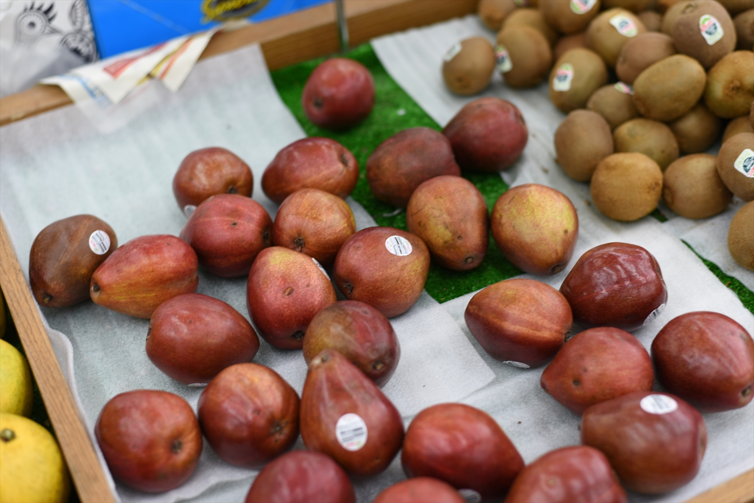 台北 冬 果物 フルーツ